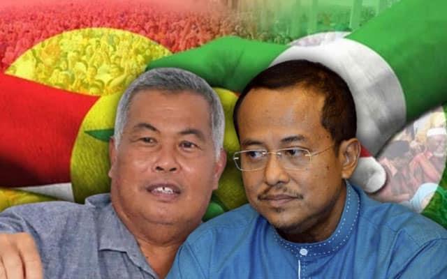 PH perlu biarkan Umno tewaskan Pas di Terengganu, jangan kacau daun