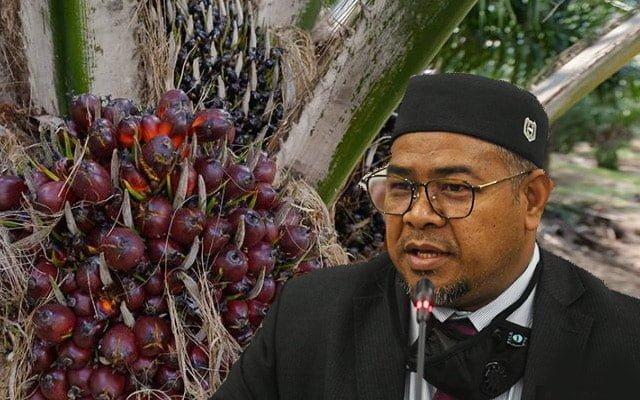 Gempar !!! Sri Lanka pula sekat minyak sawit Malaysia, ini komen menteri…