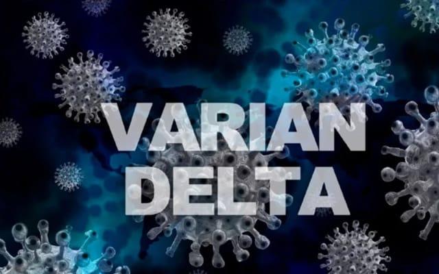 Tiada jangkitan teruk kepada kanak-kanak akibat varian delta